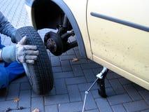 Tire, Motor Vehicle, Automotive Tire, Car stock photo