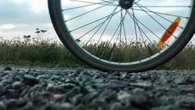 Tire on road Royalty Free Stock Images