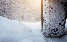 Tire on the snowy road Royalty Free Stock Image