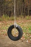 Tire Swing Stock Image