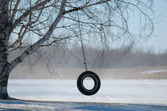 Free Tire Swing Royalty Free Stock Photos - 582738