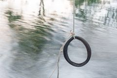 Tire swing hanging from a tree Royalty Free Stock Photo