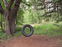 Tire Swing Nostalgia. An old tire swing hanging in a green forest Royalty Free Stock Photos