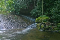 Tire Swing & Stream stock photography