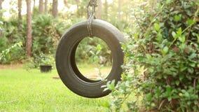 Tire Swing Tight stock video
