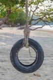 Tire swing under tree on ocean beach Stock Photo