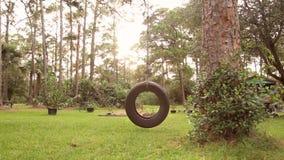 Tire Swing Wide stock footage