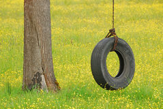 Tire Swing in Yellow Stock Image
