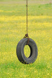 Tire Swing in Yellow Stock Photos