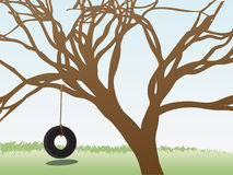 Tire swings hangs leafless tree grass field Stock Photography