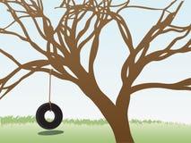 Tire swings hangs leafless tree grass field