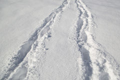 Tire trace on deep snow Stock Photography