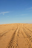 Tire traces in a dune Stock Photography