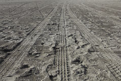 Tire track in beach Royalty Free Stock Image