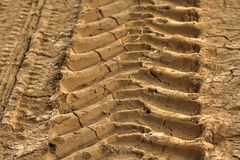 Tire track in dirt Royalty Free Stock Photography