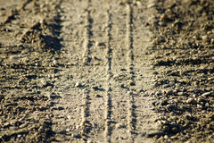 Tire track on the dirt Stock Image