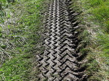 Tire track in muddy soil Royalty Free Stock Image