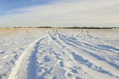 Tire track print in snow Royalty Free Stock Image