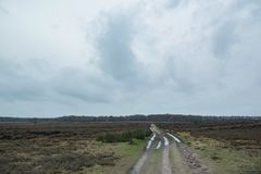 Tire track with puddles in winter heather landscape. Tire track with puddles in winter heather landscape with cloudy sky Royalty Free Stock Image
