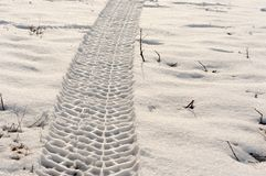 Tire track in the snow. With evening light royalty free stock photos