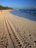 Tire tracks on the beach Royalty Free Stock Photos
