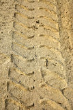 Tire Tracks on Beach Royalty Free Stock Photo