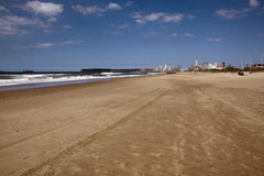 Tire Tracks on Beach in Durban South Africa Stock Image
