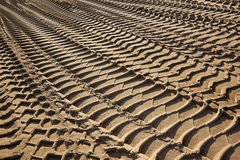 Tire tracks on a beach Royalty Free Stock Image