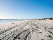 Tire tracks on beach sand Stock Image
