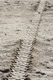 Tire tracks on dirt Stock Image