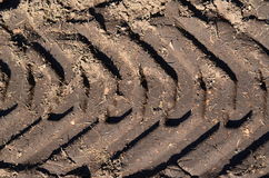 Tire tracks in the dirt Royalty Free Stock Photo