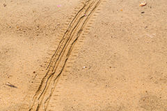 Tire tracks on dry brown yellow dirt road Royalty Free Stock Photos