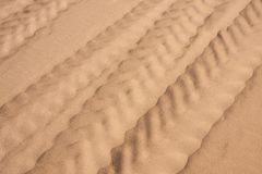 The tire tracks in the fine sand stock image