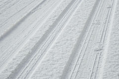 Tire tracks and footstepts on fresh snow Royalty Free Stock Photography