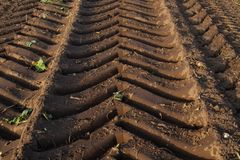 Tire tracks of a heavy harvester in brown earth stock image