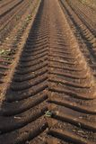 Tire tracks of a heavy harvester in brown earth stock photo