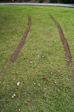 Tire tracks on the lawn Royalty Free Stock Images