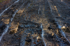 Tire tracks in mud Stock Photo