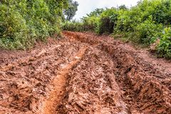 Tire tracks on a muddy road. Royalty Free Stock Photos