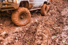 Tire tracks on a muddy road. Stock Photos
