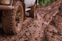 Tire tracks on a muddy road. Stock Photo