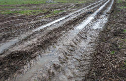 Tire tracks in muddy soil Stock Photos