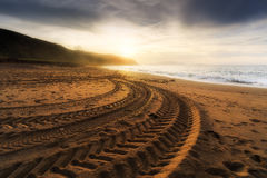 Tire tracks prints in beach sand Royalty Free Stock Photos