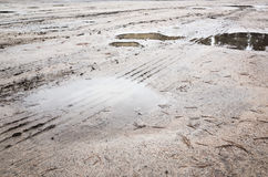 Tire tracks in rural mud road with puddles Royalty Free Stock Photo
