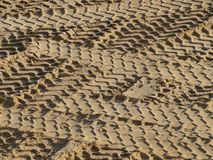 Tire tracks in the sand. South Bohemia, Czech Republic Royalty Free Stock Photography