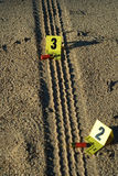 Tire Tracks and Shells Royalty Free Stock Photo