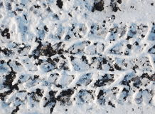 Tire tracks in snow Stock Image