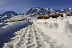 Tire Tracks in Snow Afoot large Peaks and Mountains snow covered royalty free stock images