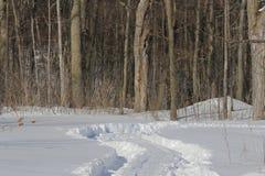 Tire Tracks Through Snow Stock Photo