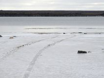 Tire tracks in the snow by the water. In Kuujjuaq, Quebec royalty free stock photography